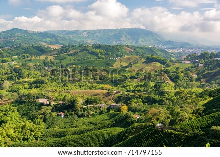 Aerial view of coffee farms near Manizales, Colombia