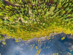 Aerial view of colorful pond in the marshlands during a fall season day. Taken in Yukon, Canada.