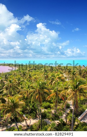 aerial view of Contoy tropical caribbean island in Mexico with palm trees and sea