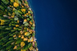 Aerial view of cottage in autumn colors forest by blue lake in rural fall in Finland