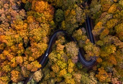 Aerial view of curvy road in beautiful autumn forest. Top view of roadway with autumn colors. Road on Fruska gora mountain in Serbia,Vojvodina