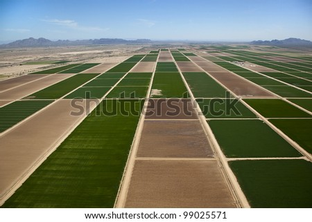 Aerial view of farmland north of Casa Grande