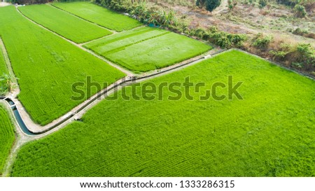 Aerial view of farmlands. Vintage tone. Bright and vivid green. Spring farmland. Taiwan farmland. #1333286315