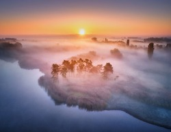 Aerial view of foggy trees in field at colorful sunrise in autumn. Colorful landscape with forest in low clouds, river, meadow in fog, orange sky with sun in the morning in fall. Top view. Nature