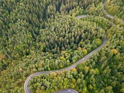 Aerial view of forest road in beautiful autumn at sunset. Curved road in the mountains with nice landscape