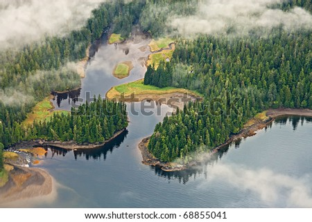 Aerial view of forests, lakes, and mist in the Tongass temperate rain forest, Misty Fjords National Monument, Alaska