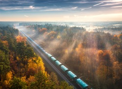 Aerial view of freight train and beautiful forest in fog at sunrise in autumn. Colorful landscape with railroad, moving train, foggy trees, sunbeams and blue sky in fall. Top view. Railway station