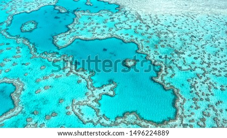 Aerial view of Great Barrier Reef in Whitsunday's Queensland Australia, famous love heart reef.