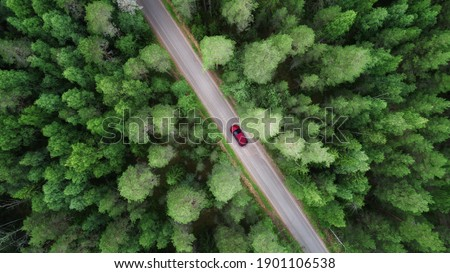 Aerial view of green forest and red car on the road. Bird's eye. Travel concept.