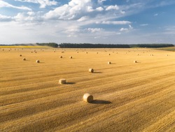 Aerial view of hay bales at sunset in summer. Top view of hay stacks. Agriculture. Field after harvest with hay rolls. Landscape with farm land, straw and meadow. Grain crop, harvesting yellow wheat