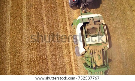 Aerial view of hay making harvester, agricultural machine,harvest wheat fields