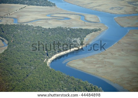 aerial view of marine forest and river