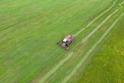 Aerial view of one harvester which reaps green grass. Agricultural machines in the field. Seasonal works in farmland.