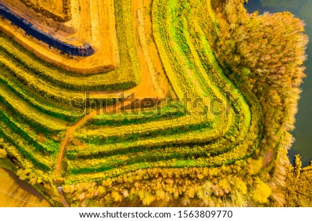 Aerial view of recultivated  landscape after mining. Dump from old underground mine. Climate change concept. Back to nature. Western Bohemia, Czech Republic, European Union. Stockfoto ©
