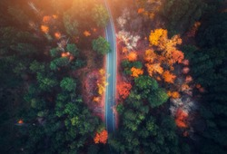 Aerial view of road in beautiful autumn forest at sunset. Beautiful landscape with empty rural road, trees with green, red and orange leaves. Highway through the park. Top view from flying drone