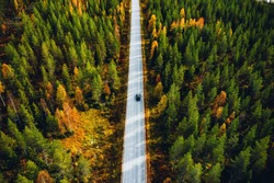 Aerial view of road in beautiful autumn forest in rural Finland. Beautiful landscape with rural road and trees with colorful leaves.