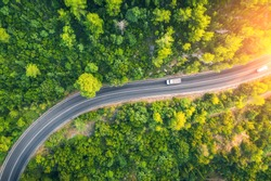Aerial view of road in beautiful green forest at sunset in spring. Colorful landscape with car on the roadway, trees in summer. Top view from drone of highway in Croatia. View from above. Travel