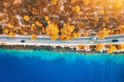 Aerial view of road in beautiful orange forest and blue sea at sunset in autumn. Colorful landscape with roadway, blurred cars, clear water, trees in fall. Top view of road along the sea coast. Travel