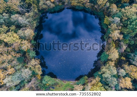 Aerial view of round shaped pond in autumn forest