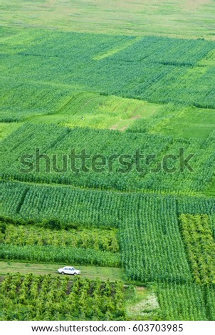 Aerial view of rural agricultural scene