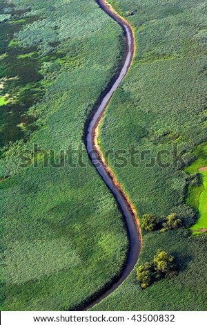 Aerial view of sinuous river