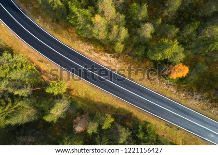 Aerial view of the road in italian forest at sunrise in Dolomites. Top view of perfect asphalt roadway, green and orange trees in autumn. Highway through the fall woodland. Trip in europe. Travel