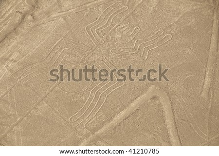 Aerial View of The Spider Geoglyph at the Nazca Lines in Peru
