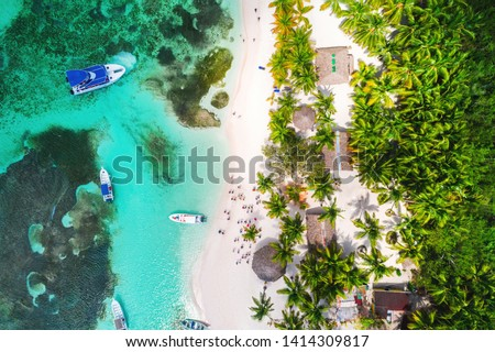 Aerial view of tropical beach. Saona island, Dominican republic Foto stock ©