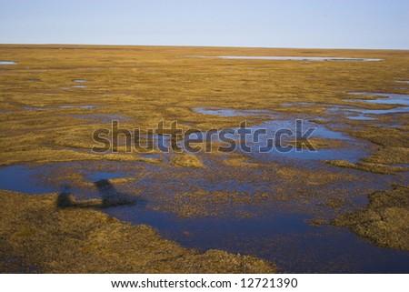 Aerial view of tundra near Arctic Ocean - stock photo