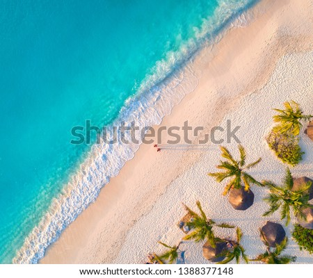 Aerial view of umbrellas, palms on the sandy beach of Indian Ocean at sunset. Summer in Zanzibar, Africa. Tropical landscape with palm trees, parasols, walking people, blue water, waves. Top view #1388377148