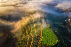 Aerial view of vegetables field in the cloud and fog, at Trại Mát, Đà Lạt, Vietnam. Near provincial route 723 from Da Lat city to Nha Trang city.