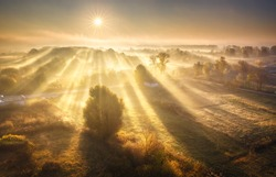 Aerial view of village in fog with golden sunbeams at sunrise in autumn. Beautiful rural landscape with road, buildings, foggy colorful trees, church, orange sky with sun. Fall in Ukraine. Top view