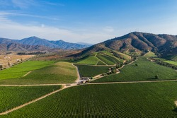 Aerial view of vineyard at Casablanca, Chile