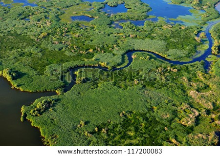 aerial view of wetland