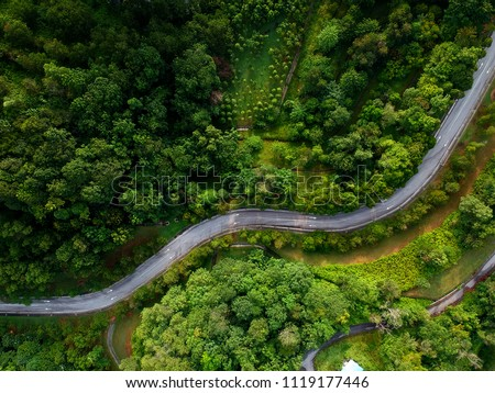 Aerial view of winding road in the forest #1119177446