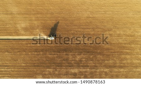 Aerial view on combine harvester gathers the wheat at sunset. Harvesting grain field, crop season. Top down view on harvester in the partly harvested field, diagonal composition.Summer, Europe