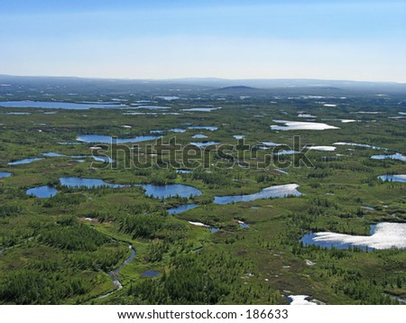 Aerial view on forest-tundra landscape from a helicopter