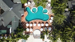 Aerial view on luxury house at the beach with palm trees and swimming pool. Top view of houses on the palm beach, pool and boat near a wooden pier. Aerial Top view landscape.