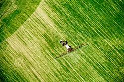 Aerial view on the field. Tractor is working on the ground. Green field in spring. Cultivating field. Agriculture