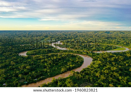 Aerial view over a tropical forest with a river in the amazon rainforest