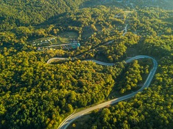 Aerial view over mountain curvy road going through forest landscape