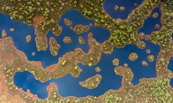 Aerial view over peat-bog landscape with the complex lake and  pool ridge patterns. Estonia is 2nd most boggy country in Europe. Peatland are important as pool of biodiversity and CO2 deposit.