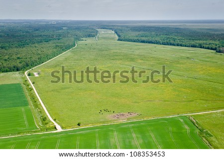 aerial view over the meadows