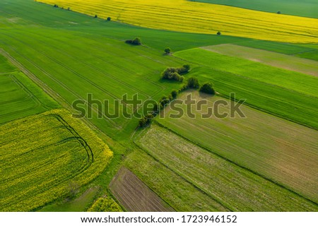 aerial view over the rural fields in the summer