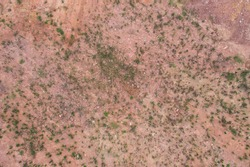 Aerial view overgrown wasteland top view