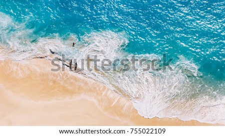 Aerial view to tropical sandy beach and blue ocean #755022109