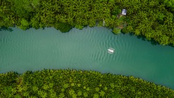 Aerial view Traditional Filipino boat or ship in the river with beautiful palm tree forest, Ecosystem and Healthy environment background concept, Loboc, Bohol, Philippines