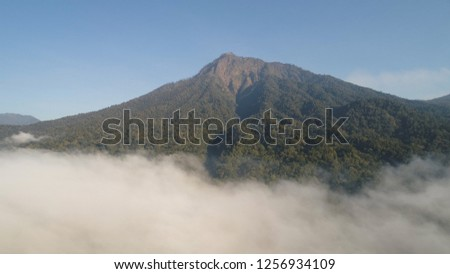 aerial view tropical forest covered clouds with lush vegetation and mountains, java island. tropical landscape, rainforest in mountainous area Indonesia. green, lush vegetation. #1256934109