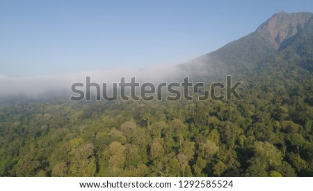 aerial view tropical forest covered clouds with lush vegetation and mountains, java island. tropical landscape, rainforest in mountainous area Indonesia. green, lush vegetation. #1292585524