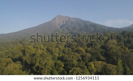 aerial view tropical forest with lush vegetation and mountains, java island. tropical landscape, rainforest in mountainous area Indonesia. green, lush vegetation. #1256934115